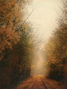 Road of Mysteries I by Amy Melious