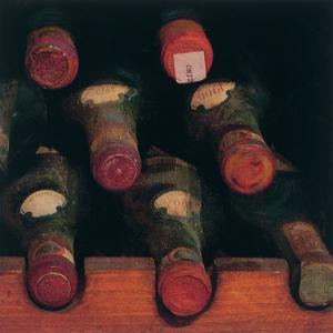 Vintage Wine Cellar II by Amy Melious