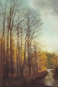 Winter Light I by Amy Melious