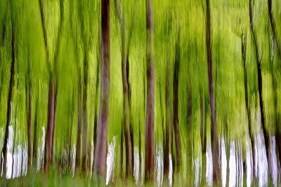 An Abstract Created by Intentional Camera Movement-John Lunt-Photographic Print