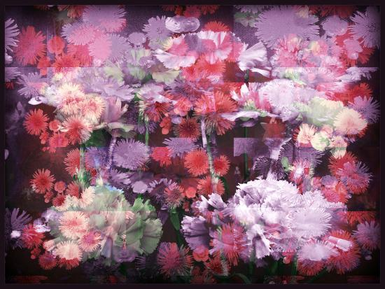 An Abstract Geometric Floral Montage Photographic Layer Work-Alaya Gadeh-Photographic Print