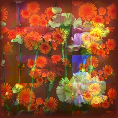 https://imgc.artprintimages.com/img/print/an-abstract-geometric-floral-montage-photographic-layer-work_u-l-q11zdo80.jpg?p=0