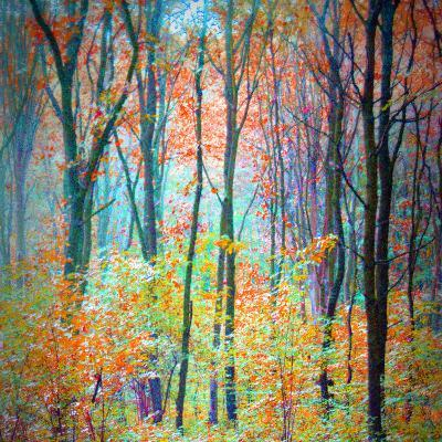 An Abstract Multicolorl Montage from the Forest, Photographic Layer Work-Alaya Gadeh-Photographic Print