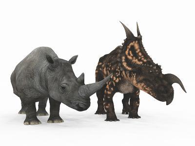 An Adult Einiosaurus Compared to a Modern Adult White Rhinoceros-Stocktrek Images-Photographic Print