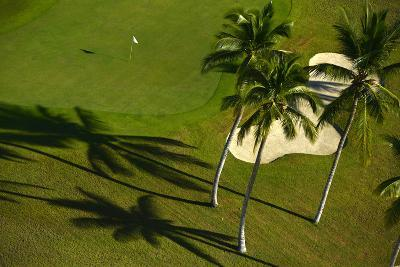 An Aerial View of Palm Trees Casting Shadows onto Playa Nueva Golf Course-Raul Touzon-Photographic Print