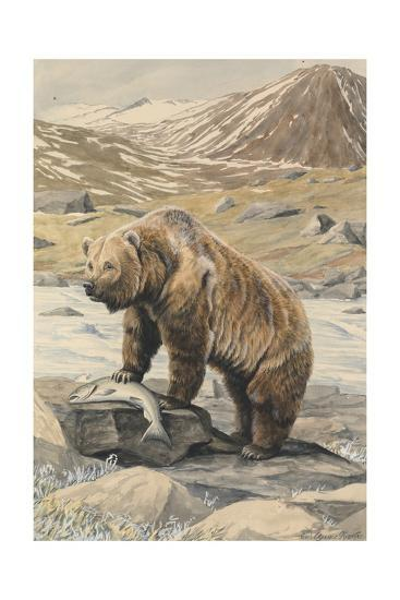 An Alaskan Brown Bear with a Salmon it Caught in a Nearby River-Louis Agassi Fuertes-Giclee Print
