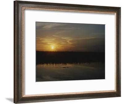 An Alligator in Silhouette Glides Through Wetlands at Sunset-Raul Touzon-Framed Photographic Print