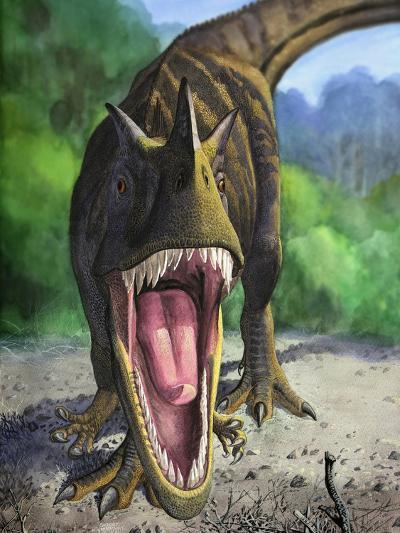 An Angry Ceratosaurus Dentisulcatus Dinosaur Shows Its Fierce Teeth-Stocktrek Images-Photographic Print