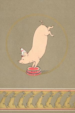 An Anthropomorphic Pig Performing in a Circus--Giclee Print