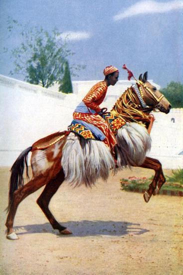 An Arab Dancing Horse, Udaipur, India, 1922-Herbert Ponting-Giclee Print