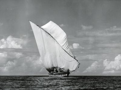 An Arab Dhow, Old Mombasa Harbour, Kenya, 5th April 1952-Charles Trotter-Photographic Print