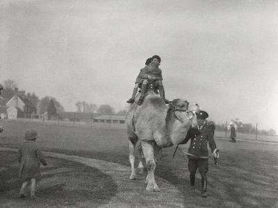 An Arabian Camel Taking a Pair of Children for a Ride at Zsl Whipsnade, March 1932-Frederick William Bond-Photographic Print