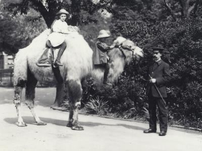 An Arabian Camel with Keeper Being Ridden by Two Children-Frederick William Bond-Photographic Print