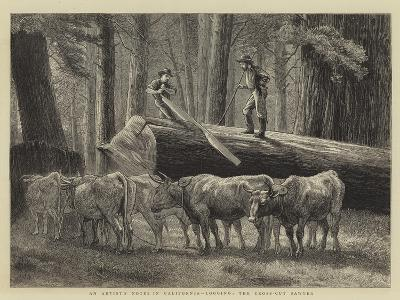 An Artist's Notes in California, Logging, the Cross-Cut Sawyer--Giclee Print