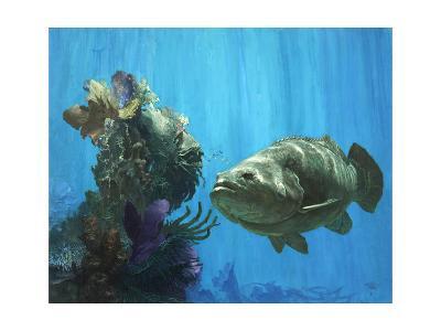 An Atlantic Goliath Grouper in 'Secrets of Arcimboldo's Reef, 2000'-Stanley Meltzoff-Giclee Print
