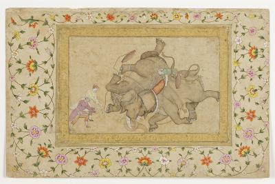 An Elephant Combat, with Border Floral Arabesque, C.1610--Giclee Print
