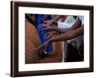 An Elephant Orphan Is Touched by Visiting Schoolchildren-Michael Nichols-Framed Photographic Print