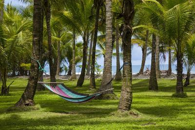An Empty Hammock Suspended Between Palm Trees Along the Beach Near Parrita-Anand Varma-Photographic Print