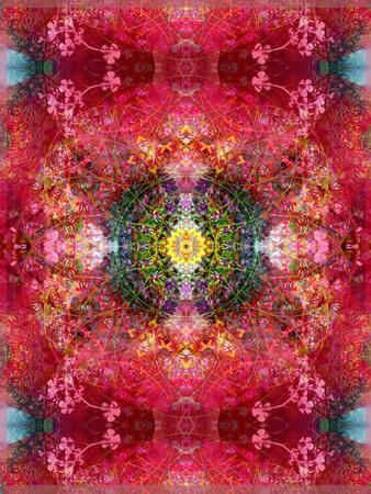 https://imgc.artprintimages.com/img/print/an-energetic-symmetric-onament-from-flower-photographs_u-l-q11yyje0.jpg?p=0