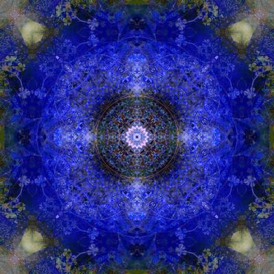 https://imgc.artprintimages.com/img/print/an-energetic-symmetric-onament-from-flower-photographs_u-l-q11zalj0.jpg?p=0
