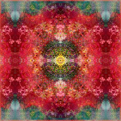 https://imgc.artprintimages.com/img/print/an-energetic-symmetric-onament-from-flower-photographs_u-l-q11zazx0.jpg?p=0