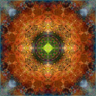 An Energetic Symmetric Onament from Flower Photographs-Alaya Gadeh-Photographic Print
