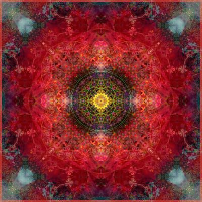 https://imgc.artprintimages.com/img/print/an-energetic-symmetric-onament-from-flower-photographs_u-l-q11zb0w0.jpg?p=0