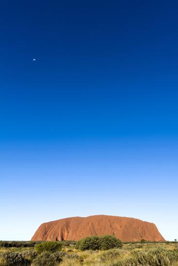 An Enormous Clear Blue Sky Rises Above the Desert Plain and Uluru-Jason Edwards-Photographic Print