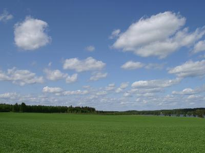 An Expanse of Lush Green Grass with Blue Sky and Flutty Clouds by a River--Photographic Print