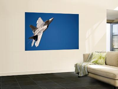 An F-22 Raptor Aircraft Performs During Aviation Nation 2010-Stocktrek Images-Wall Mural