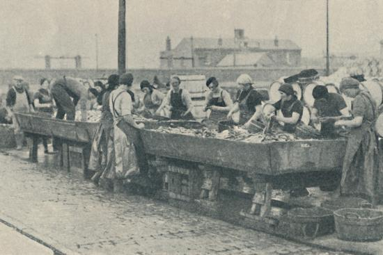 'An Important Part of the Industry. Scottish girls busy gutting at Yarmouth', 1937-Unknown-Photographic Print