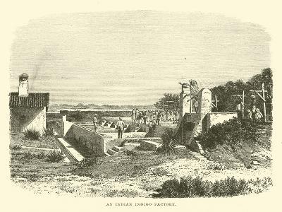 An Indian Indigo Factory--Giclee Print