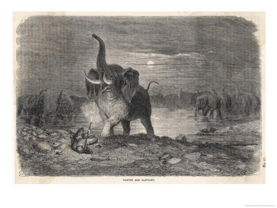 An Intrepid Hunter Takes-Gustave Dor?-Giclee Print