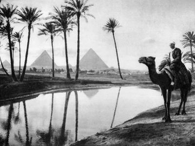 An Oasis Near Cairo, Egypt, C1920S