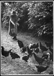 An Older Woman in a Long Dress and Wide-Brimmed Hat Throws Handfuls of Chicken Feed