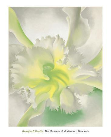 https://imgc.artprintimages.com/img/print/an-orchid-1941_u-l-f54agc0.jpg?p=0
