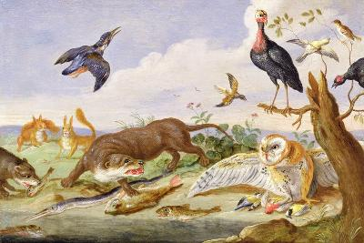 An Otter and an Owl Guarding their Catches-Jan van Kessel the Elder-Giclee Print