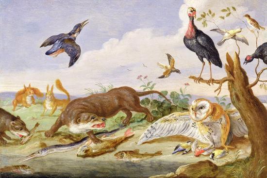 An Otter and an Owl Guarding their Catches-Jan van Kessel the Elder-Giclee Print