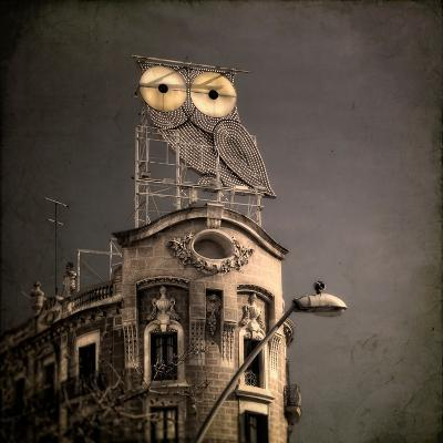 An Owl on a Roof in the City-Luis Beltran-Premium Photographic Print