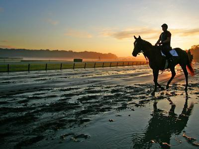An Unidentified Horse and Rider on the Track at Sunrise at Belmont Park--Photographic Print