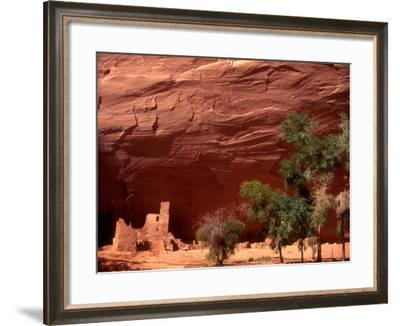 Anasazi Antelope House Ruin and Cottonwood Trees, Canyon de Chelly National Monument, Arizona, USA-Alison Jones-Framed Photographic Print