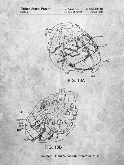 Anatomical Heart-Cole Borders-Art Print