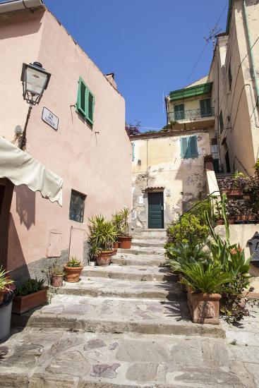 Ancient alley, Porto Azzurro, Elba Island, Livorno Province, Tuscany, Italy, Europe-Roberto Moiola-Photographic Print