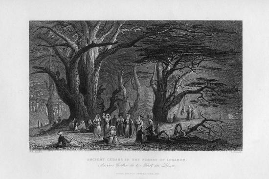 Ancient Cedars in the Forest of Lebanon, 1841-J Redaway-Giclee Print