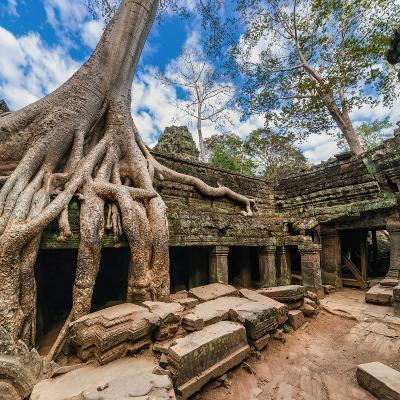 Ancient Khmer Architecture. Ta Prohm Temple with Giant Banyan Tree at Angkor Wat Complex, Siem Reap-Im Perfect Lazybones-Photographic Print