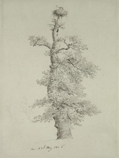 Ancient Oak Tree with a Stork's Nest, 23rd May 1806-Caspar David Friedrich-Giclee Print