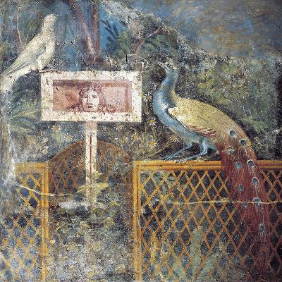 Ancient Roman Fresco with Birds and Tragic Theatre Mask--Giclee Print