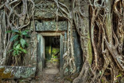 Ancient Stone Door and Tree Roots, Ta Prohm Temple, Angkor, Camb-f9photos-Photographic Print