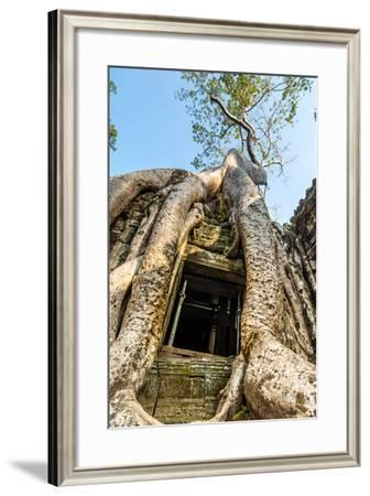 Ancient Stone Door and Tree Roots, Ta Prohm Temple-David Ionut-Framed Photographic Print