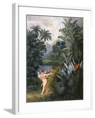And Then Divine Linnaeus , C.1796-1807-Philip Reinagle-Framed Giclee Print